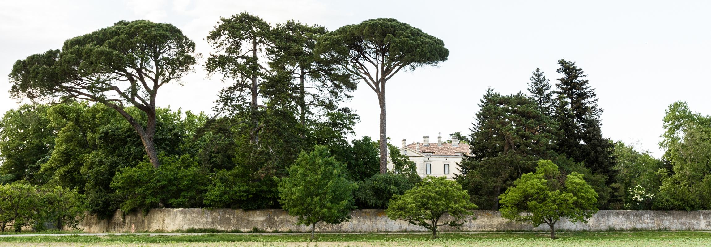 C'est la vue de l'Hôtel Château de Montcaud que vous avez en arrivant de Bagnol-sur-Cèze. Situé en Provence, dans le sud de la France, l'hôtel château est entouré d'un magnifique parc avec des arbres centenaires et un mur historique.